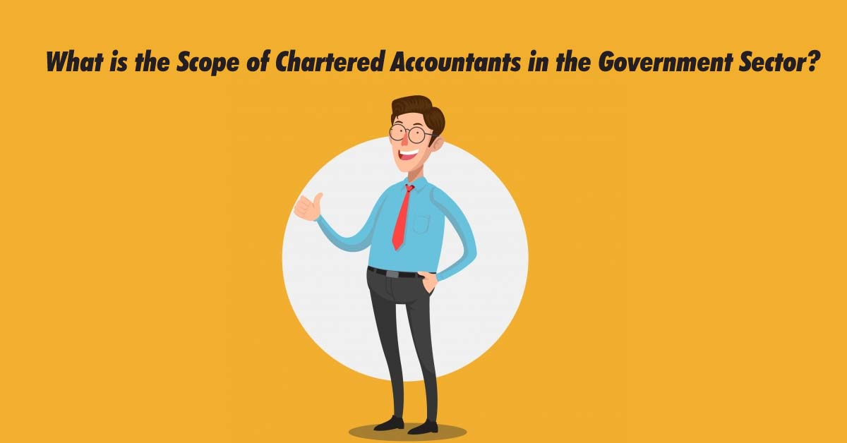 What is the Scope of CA in the Government Sector?